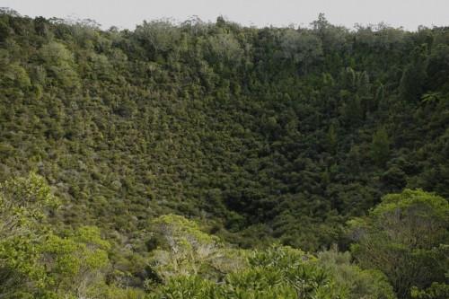 rangitoto-crater