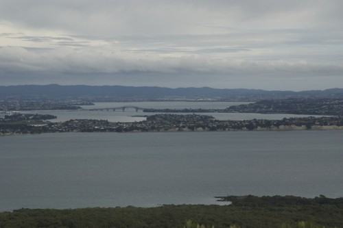 rangitoto-summit2