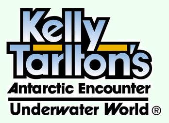 Kirándulás – Kelly Tarlton's