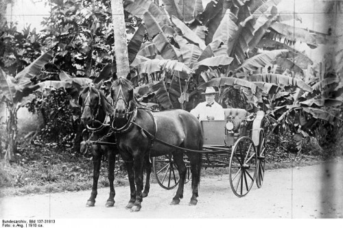 Dr. Wilhelm Solf, German Samoa kormányzója