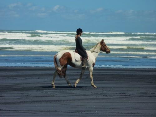 muriwai-ride