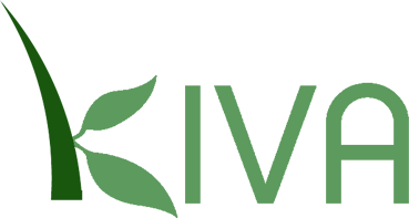 Önkéntes mikrohitelezés – KIVA