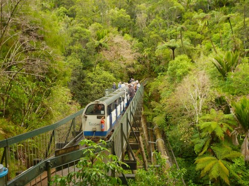Rainforest Express – Waitakere Ranges