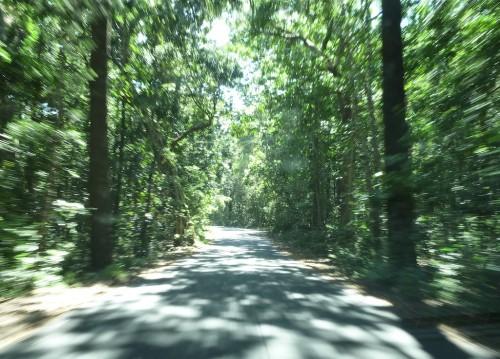 Kirándulás – Sunshine Coast és Gold Coast