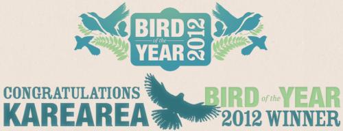 Kārearea – az év madara