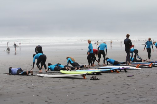 surf-hasal