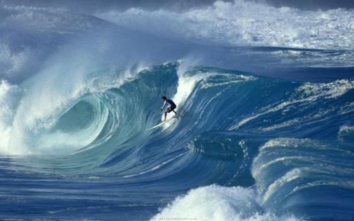 surf-illuszt