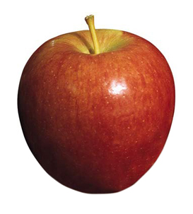 apple-braeburn