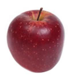 apple-pacificqueen