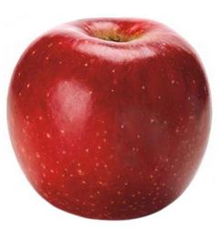 apple-pacificrose