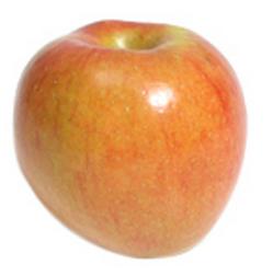 apple-sonya