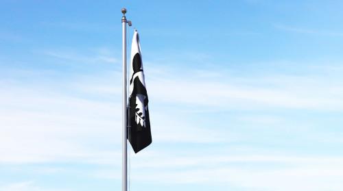 flag-Black-and-white-fern-limp